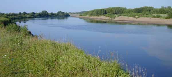 Рыбалка на реке Молома