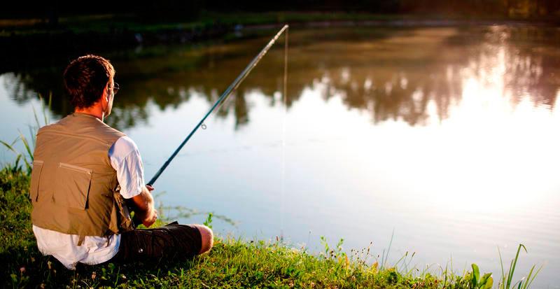 Платная рыбалка в Пирогово