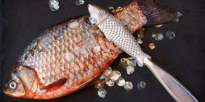 Чистка для рыбы электрическая – 6 лучших рыбочисток — Рейтинг 2019