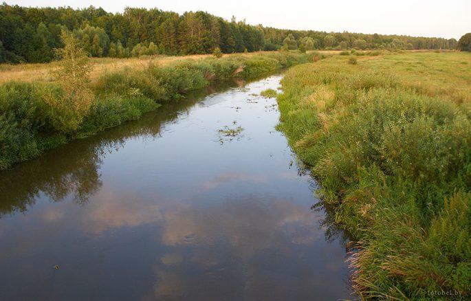 Река Морочь
