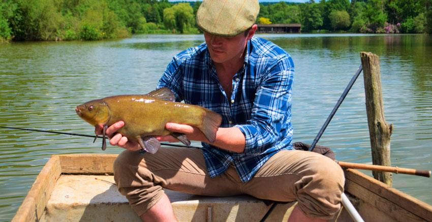 Как поймать линя в мае рыбаки начинают оживать Рыбы пытаются