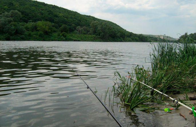 Водоемы для рыбалки в Белогорье