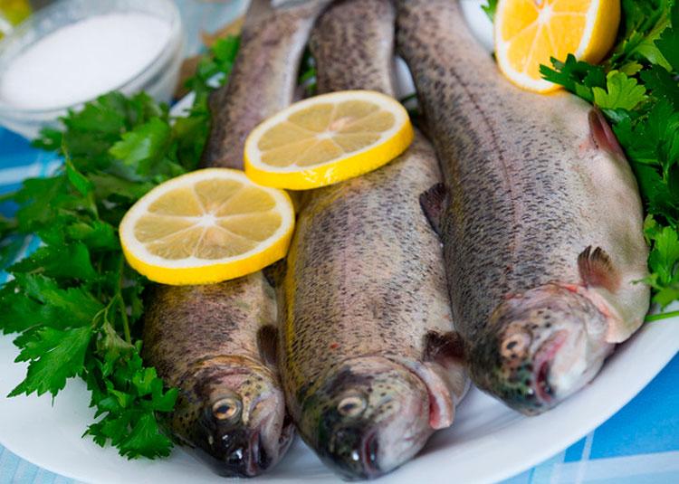 Какую рыбу лучше выбрать для диеты