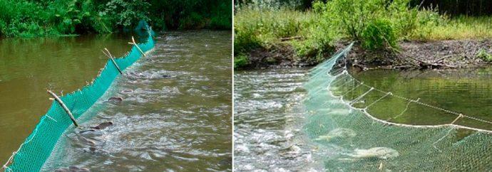 Установка рыболовных сетей на реках