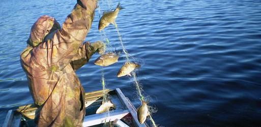Как ставить рыболовные сети