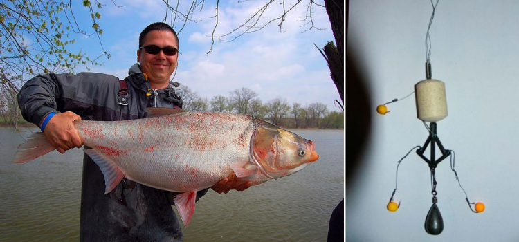 как ловить толстолобика на реке видео