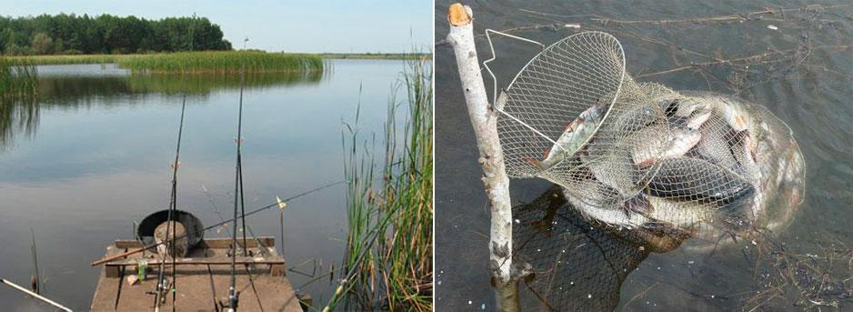 фидерная рыбалка в стоячей воде