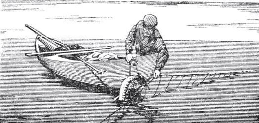 рыболовная снасть на толстолоба своими руками