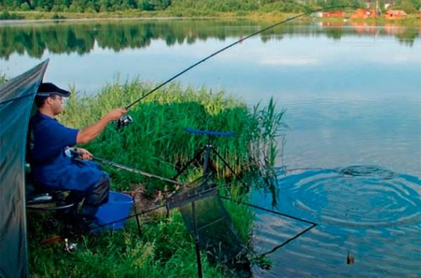 ловля карася на кормушку на озере