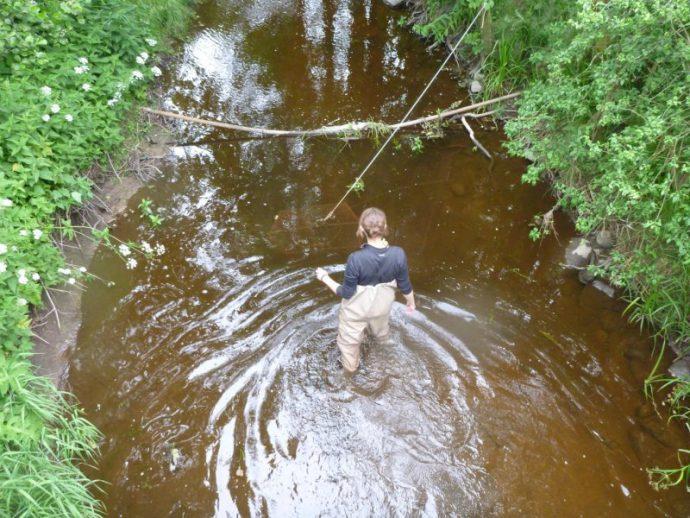 ловля рыбы на вершу фото