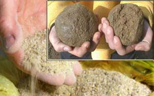 прикормки для карася и карпа
