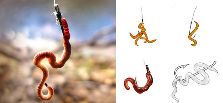 снасти для рыбалки червяки