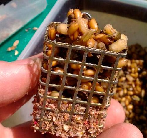 перловка для рыбалки в микроволновке
