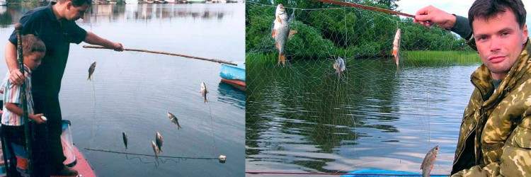 Рыбалка экраном