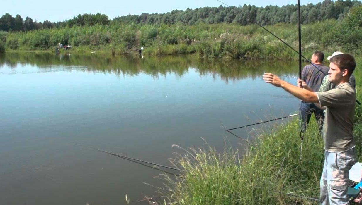 прикормка для ловли карася на пруду