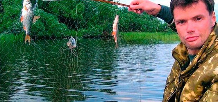 Ловля рыбы на экран