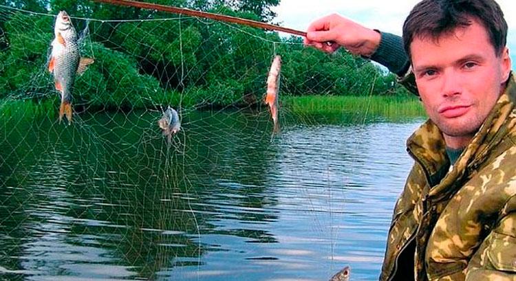 как изготовить экран для ловли рыбы