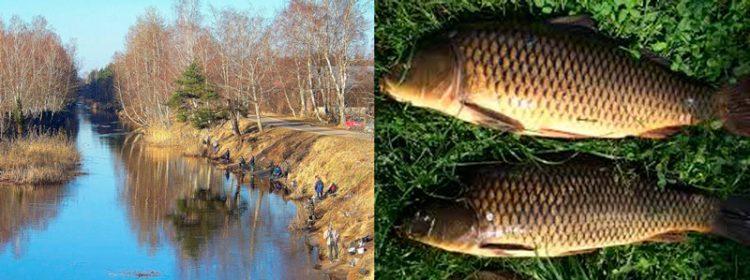 советы по рыбалке ранней весной