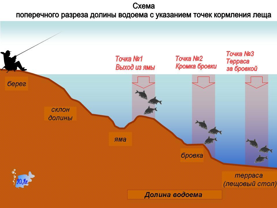 прикормка рыбы течении