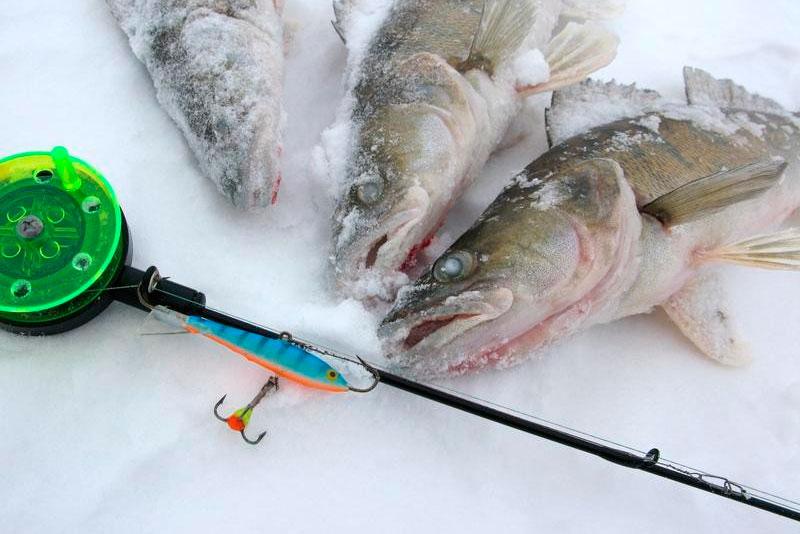 особенности рыбалки на блесну