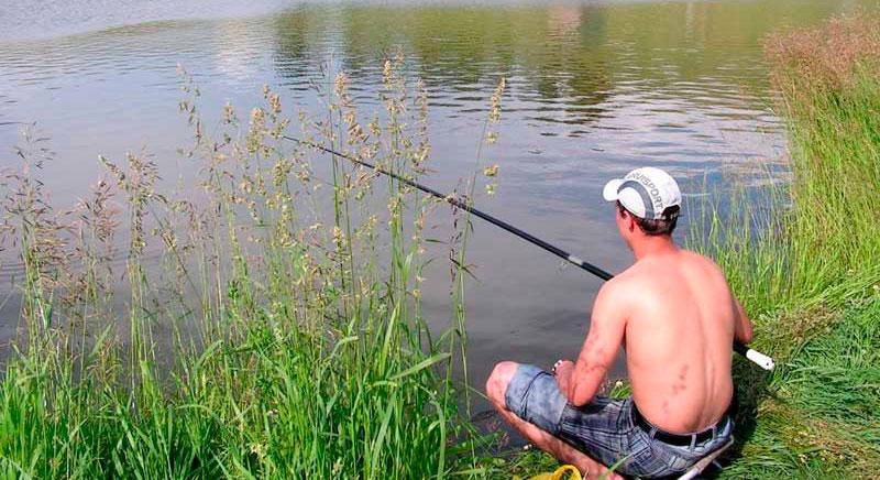 горох для рыбалки на леща