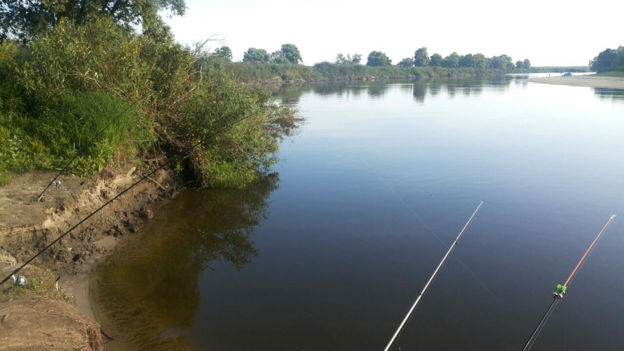 ловля леща на реке в конце апреля