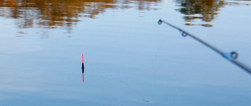 поплавок возле ловли карасей