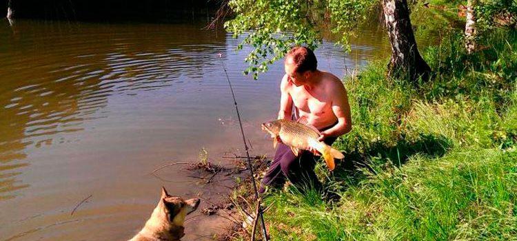 Скачать Игру Рыбалка На Русском Языке - фото 9
