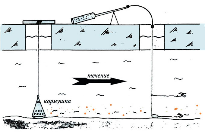 прикормка рыбы на течении
