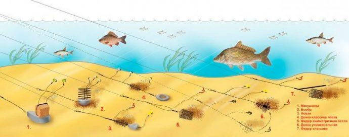 ловля рыбы фидором