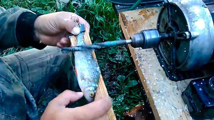 Чистка мелкой рыбы