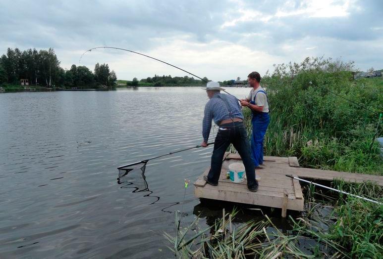 можно ли ловить рыбу в арендованных прудах