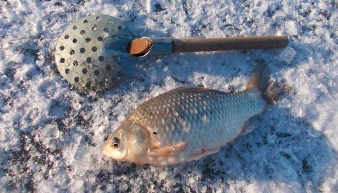 корица для прикормки рыбы