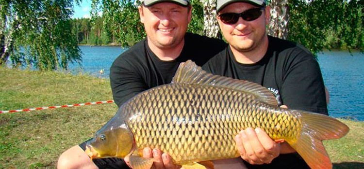 рыбалка на реке томь кемеровская область рыбалка