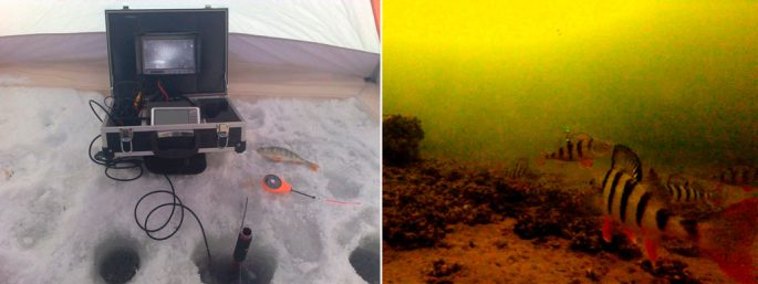 видеокамера подводная для рыбалки екатеринбург
