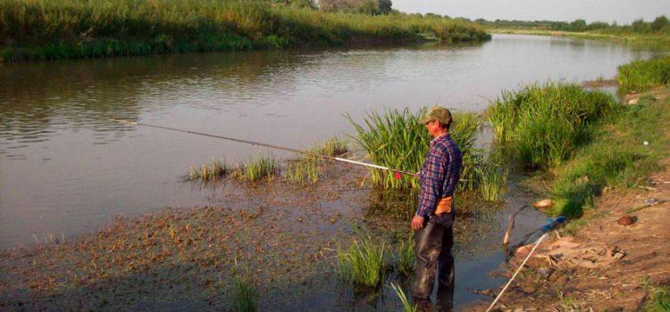 Ловля карася на реке
