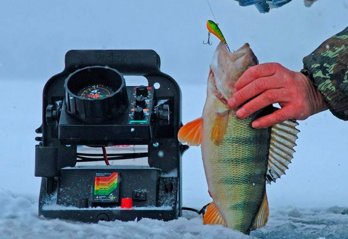 выбор места для рыбалки по эхолоту