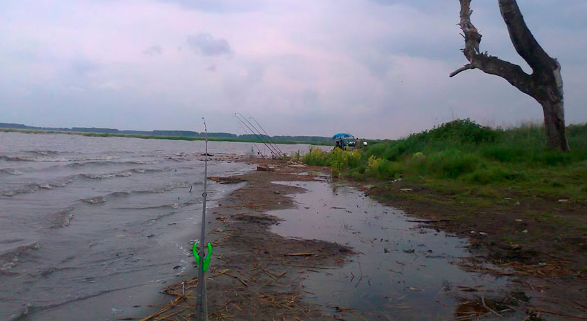 рыбалка челябинская область за бродокалмаком