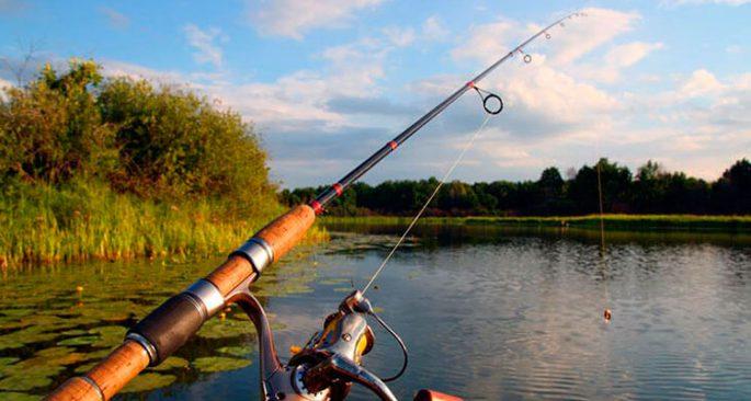 как правильно выбирать катушку на рыбалку