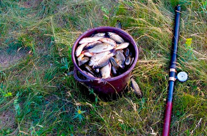 Снасти для ловли карася осенью