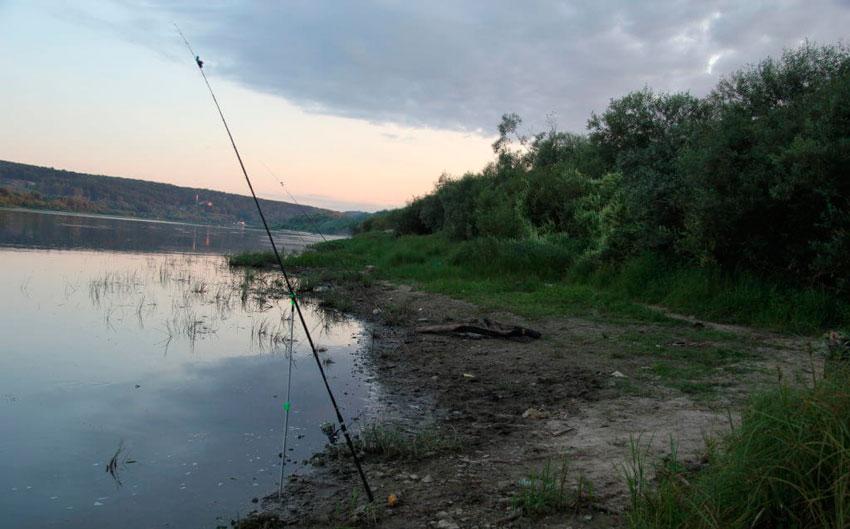 рыбалка в луховицком районе 2017