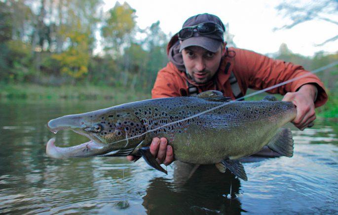 Рыбалка на лососевых