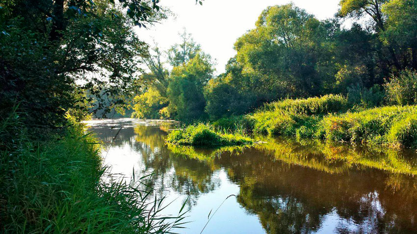 ловля леща в калининградской области летом