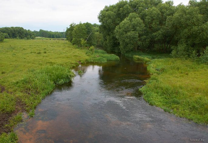 Река Уса