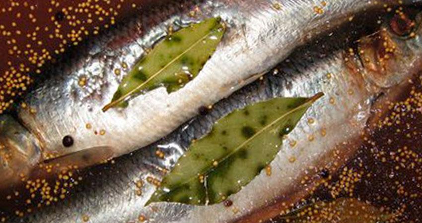 Как солить мелкую рыбу для сушки в домашних условиях 38