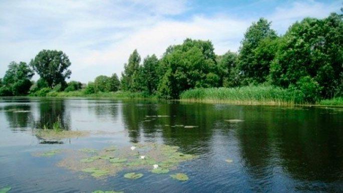 Реки Брестской области