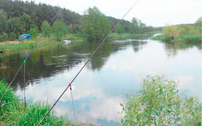 Река Щара