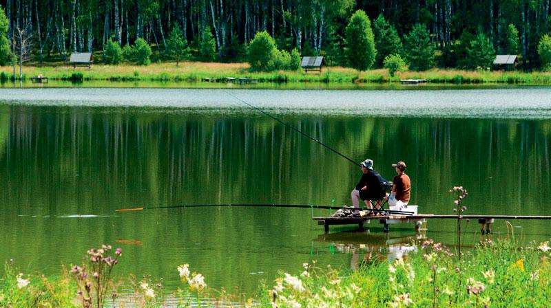 Все о озерной рыбалке