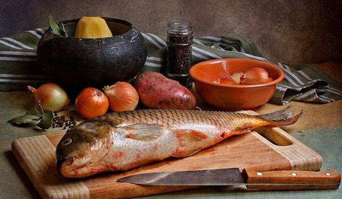 Лучшие рецепты блюд из карпа